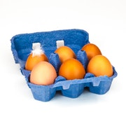 Welsh Free Range Eggs box of 6